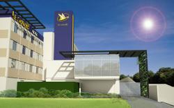 Hotel Le Canard Joinville
