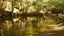 Parque Natural Del Gorbeia - Gorbeia Central Park