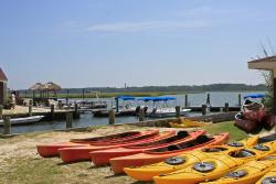 ‪Old Town Canoe and Kayak Assateague Island Tours‬