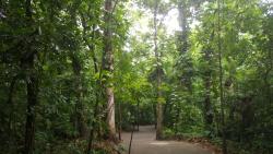 Parque Muse La Venta