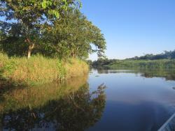 Pantanal Fluminense