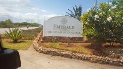 The Zanzibar Dream