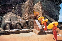 Sri Lanka Midigama Tours