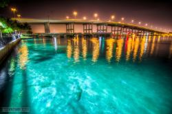 Blue Heron Bridge Scuba