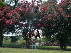 Robbins Park