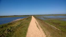 The Solent Way Walk