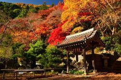 Konzoji Temple