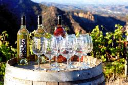Malibu Wine Safaris