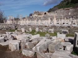 Vedius Gymnasium