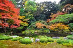 Nanzenin Garden