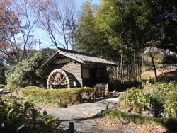 Kyodo No Mori Museum