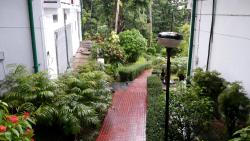 Well maintained  garden