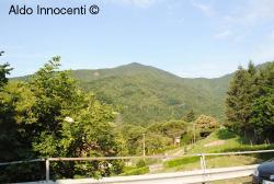Riserva Naturale Acquerino Cantagallo