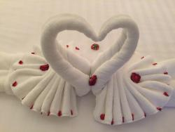 swan heart on bed