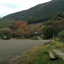 Kanagawa Prefecture 21st Century Forest