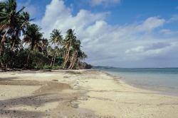 Spiaggia sulla costa meridionale (161777559)