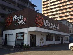 Hanamaru Udon Tsurumirokuchi