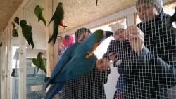 Zoo Kontakt