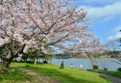 Sanaruko Park