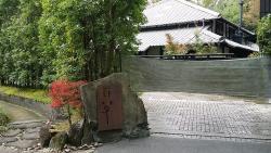 Gyaruri Momogusa