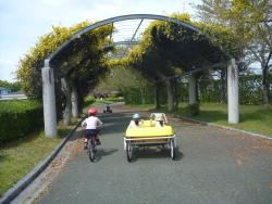 Kurume Cycling Family Park