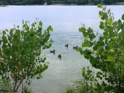 Holmes Park & Lake