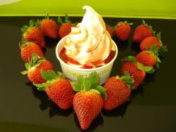 Yogurtlandia I Portali