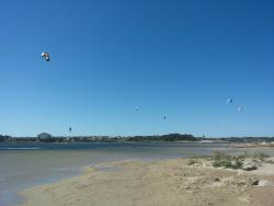 Ninska Laguna Beach