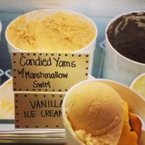 Tropilicious Ice Cream