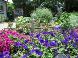 Main St. Community Garden