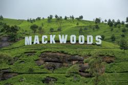 Mackwoods Labookellie Tea Centre