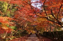 Komyoji Temple