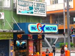 Big Nectar