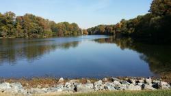 Lake Elkhorn Park
