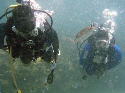 OceanZoneExplorers