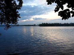 View of the backwater