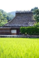 Miyama Futon&Breakfast thatched cottages