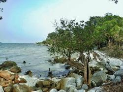 Tanjung Batu Pulas Beach