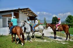 Equestrian Center Sivek