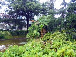 Campo 24 de Agosto Garden