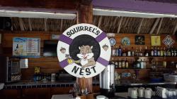 Squirrel's Nest
