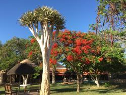 Namibia Wildlife Resorts Khorixas Lodge