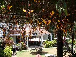 INDeco's Lake Forest Hotel Yercaud