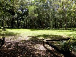 Minjungbal Aboriginal Cultural Centre
