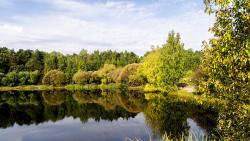 Park Pokrovskoye-Streshnevo