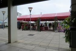 Mercato Coperto di Uturoa