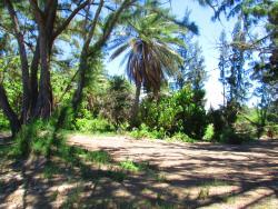 Pua`ena Point Beach Park