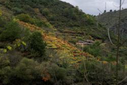 Ruta de las pasarelas del rio Mao