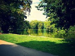 Stadtwald Park Koln