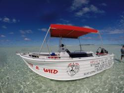 Wet & Wild Aitutaki
